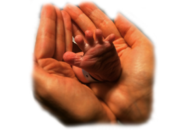 hamilelik-dogum-mega-menu-image-2